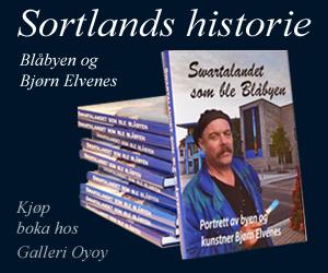 Blåby-Galleri.jpg