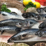 Mot toppår for fisk